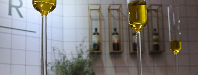 Oli-Bar-Maestros-de-Hojiblanca_2